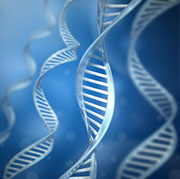 6 in 10 Americans Interested in Genetic Testing, Survey Finds